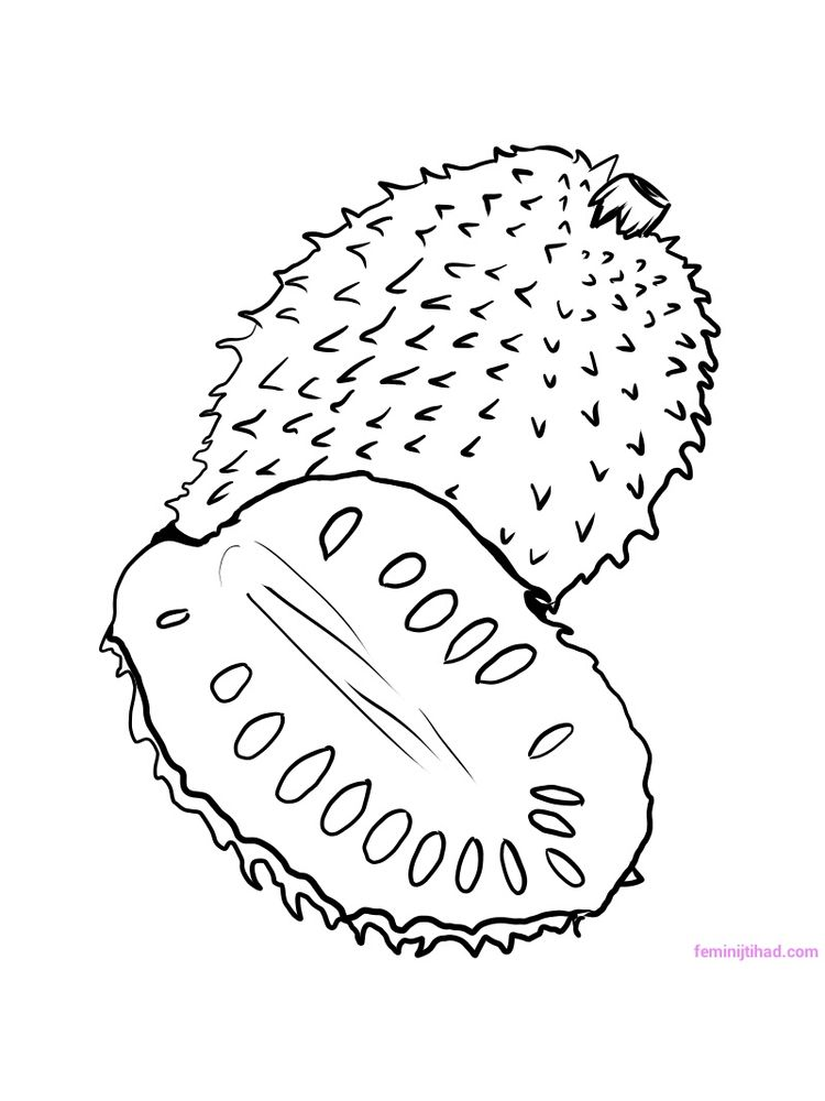 soursop coloring pages printable