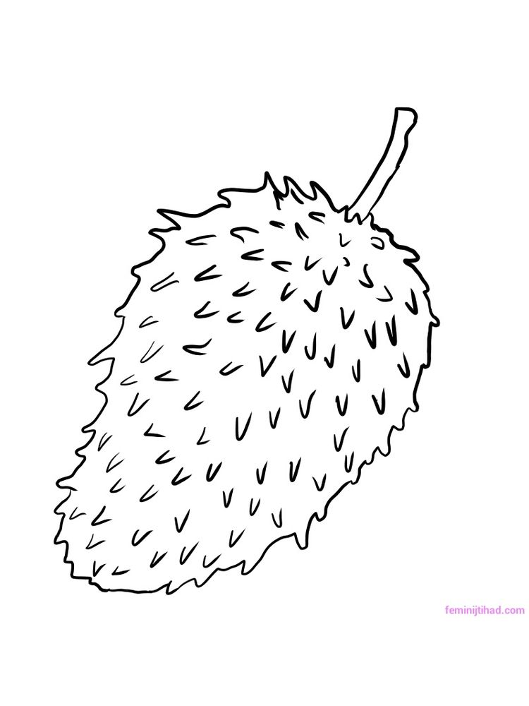 soursop coloring pages