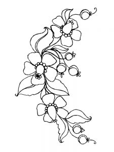 spring flowers coloring pages for preschoolers