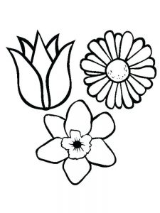 spring flowers coloring pages to print pdf
