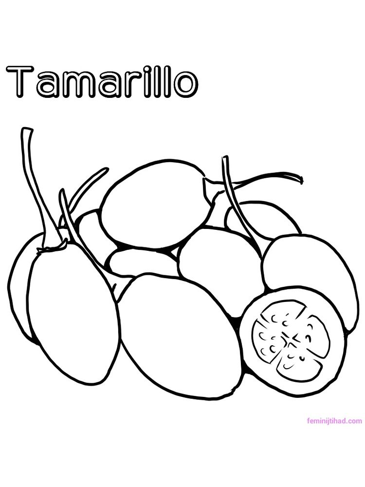 tamarillo coloring pages free