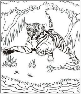 tiger roaring and jumping coloring page