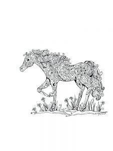 wild horse coloring pages download
