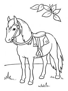 wild horse coloring pages free print
