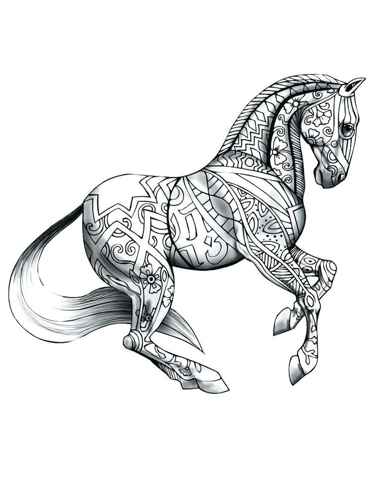 wild horse coloring pages free