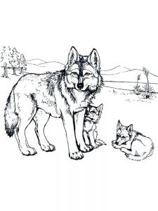 wolves coloring pages image